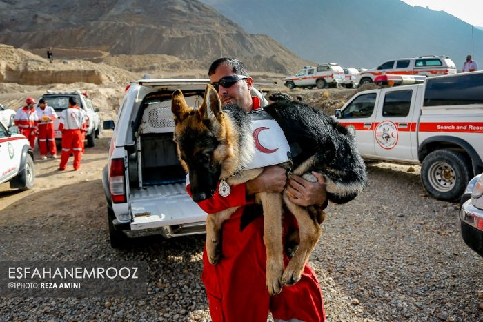 مانور سگهای زنده یاب آلمانی در نجف آباد