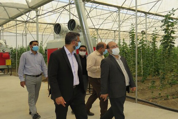 بهرهبرداری-از-مرحله-نخست-طرح-ملی-بذر-در-دانشگاه-آزاد-نجفآباد